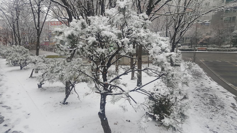 겨울왕국.png